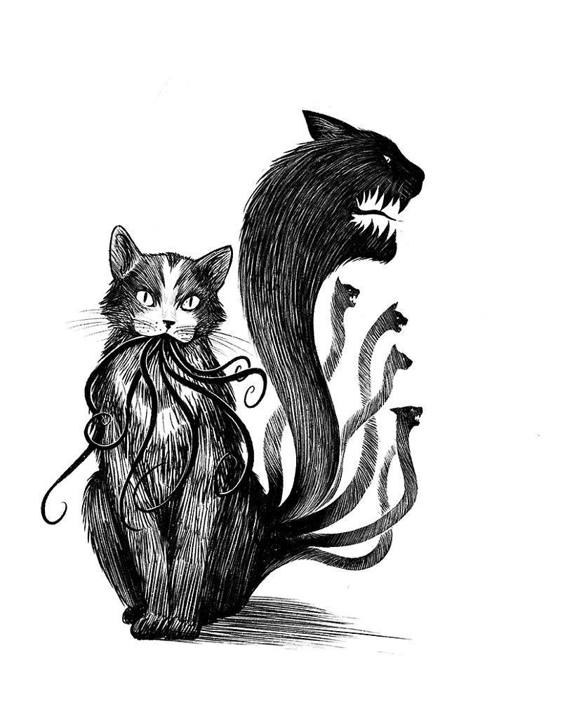 chat d'Ultar